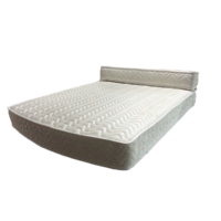 NCE Dreamweaver II Queen Bolster Mattress